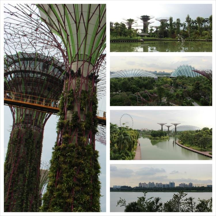 Marina Gardens